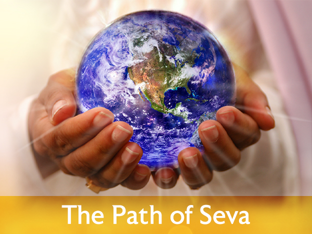 Path of Seva course image